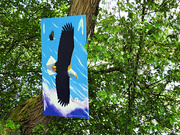 8th Jun 2021 - Green Lake Art Display