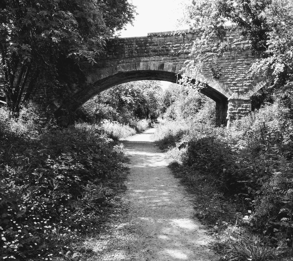 Summer. . Old Railway Walk by 365projectorgjoworboys