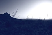 9th Jun 2021 - blue land