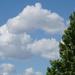 Clouds dancing