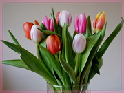 10th Jun 2021 - a glass vase of tulips...