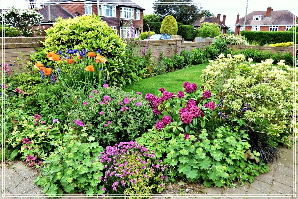 The side garden by beryl
