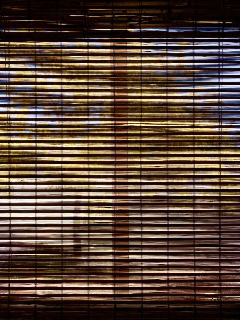 Bamboo shade by jeffjones