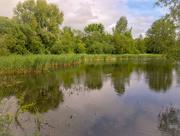 11th Jun 2021 - lake view