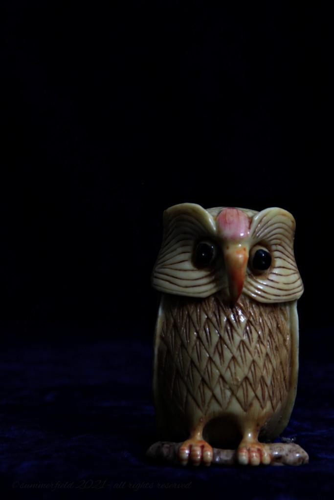 merlin, the owl by summerfield