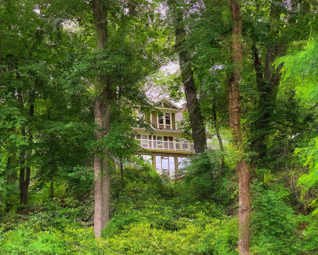 The House in the Woods by njmom3