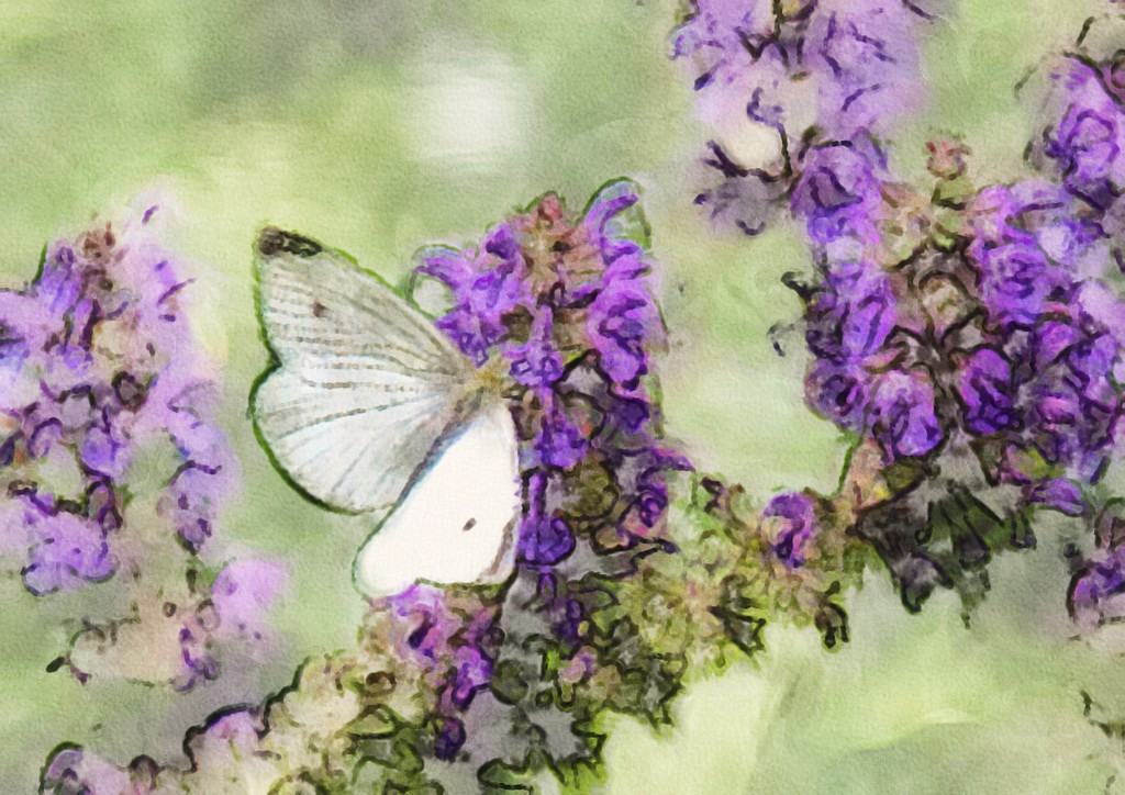 In the Garden by mzzhope