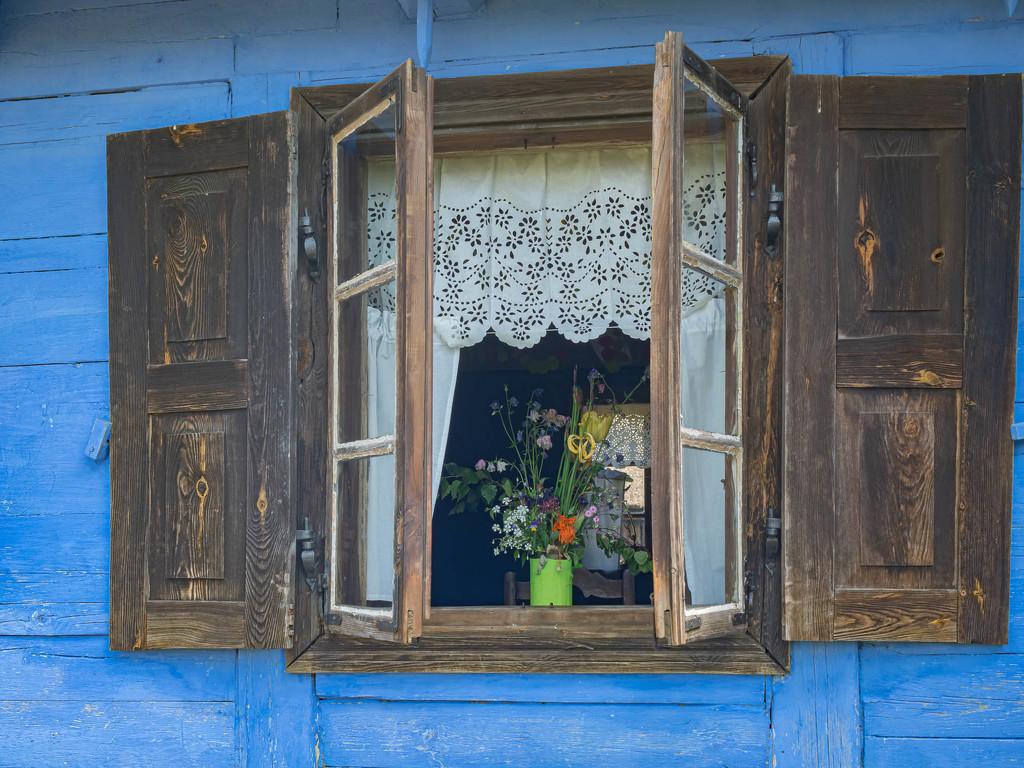 The window by haskar