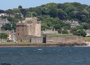 12th Jun 2021 - Broughty Castle, Photobombed By A Seagull