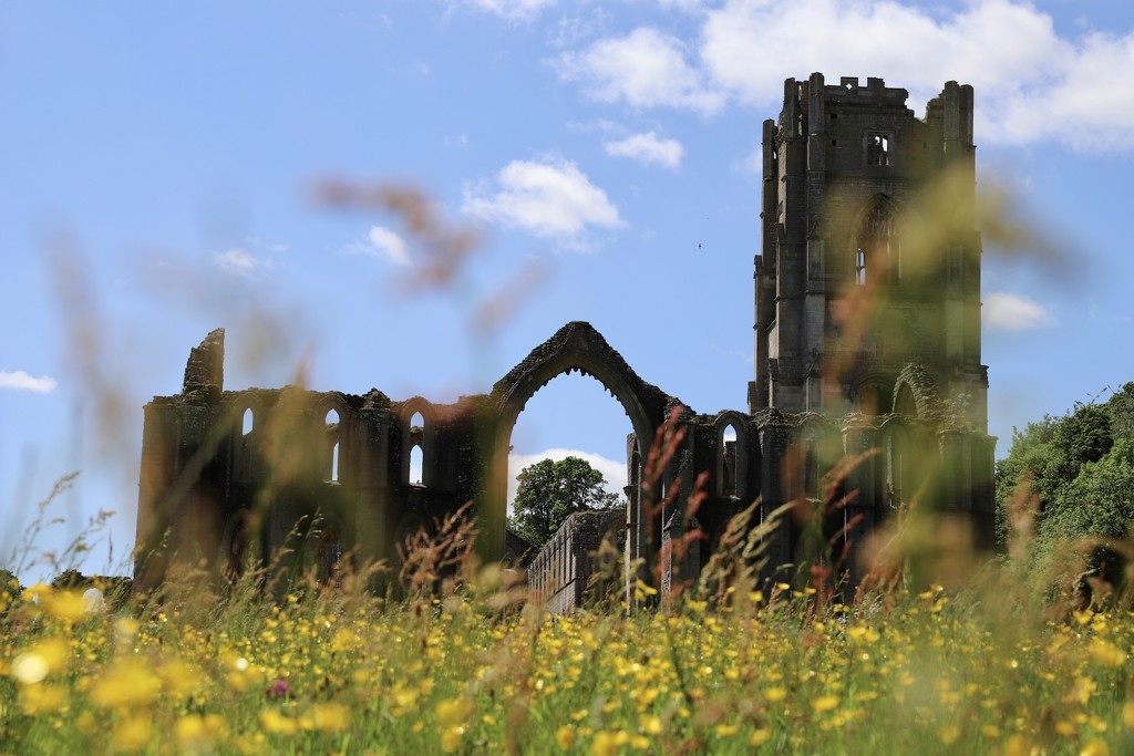 Fountains Abbey by phil_sandford