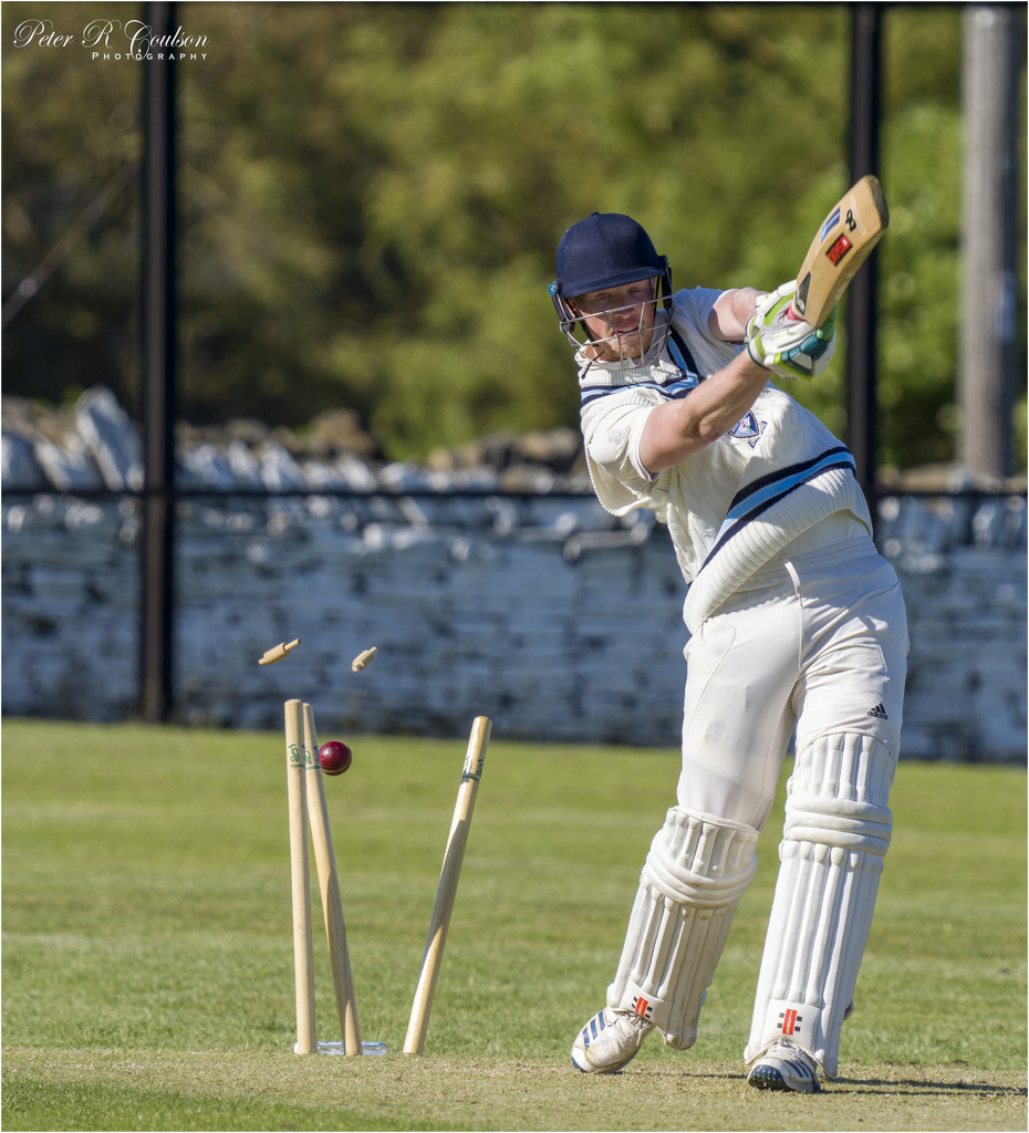 Clean Bowled Out by pcoulson