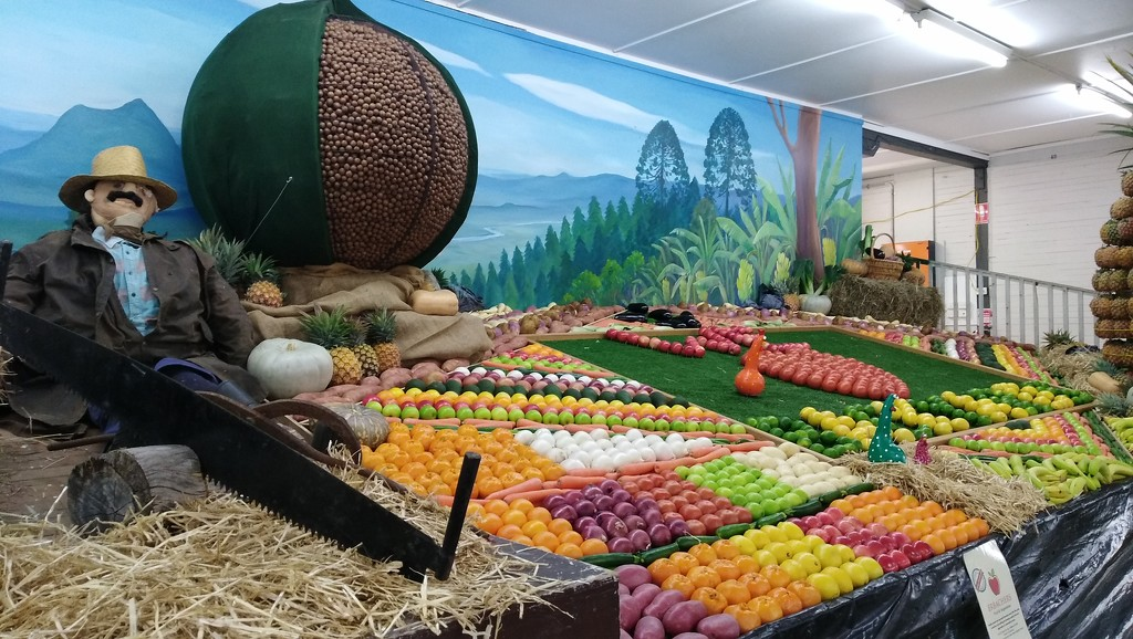 Produce Stall Nambour show Queensland by 777margo