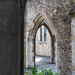 Aylesford Priory 3 by peadar