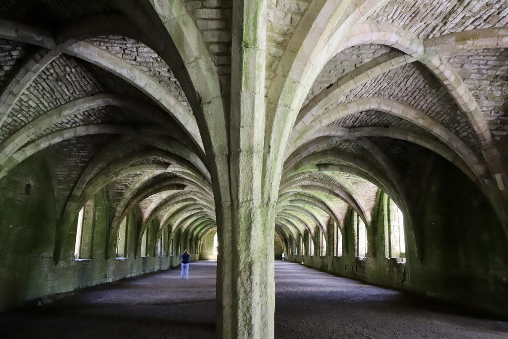 Fountains Abbey Winery by phil_sandford