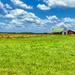 Rural Scenic View