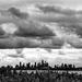 Melbourne under clouds