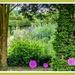 Just A Glimpse,Kelmarsh Hall Gardens