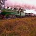 Steam train return