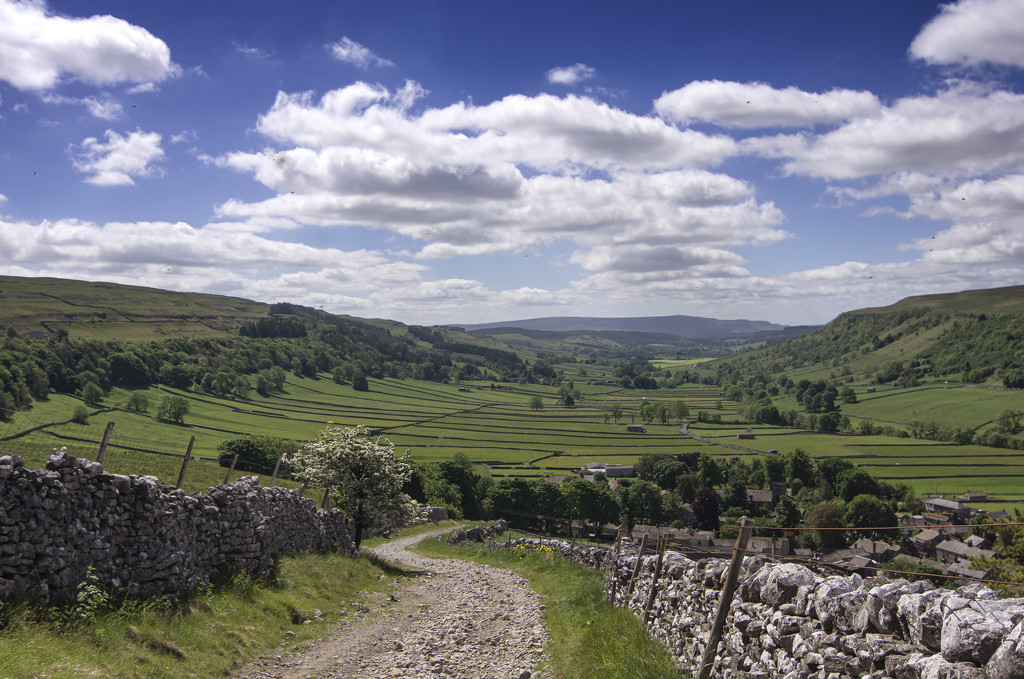 Glorious Wharfedale by fueast
