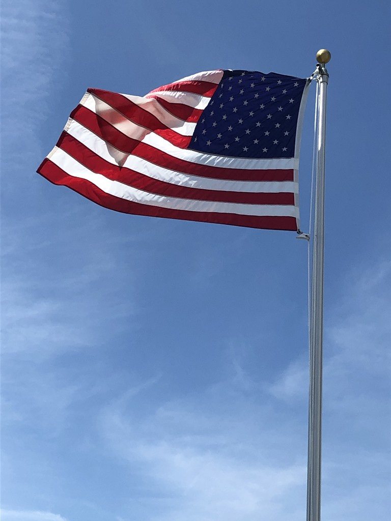 Flag Day is the US Army's birthday! by homeschoolmom