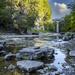 The Elora Gorge
