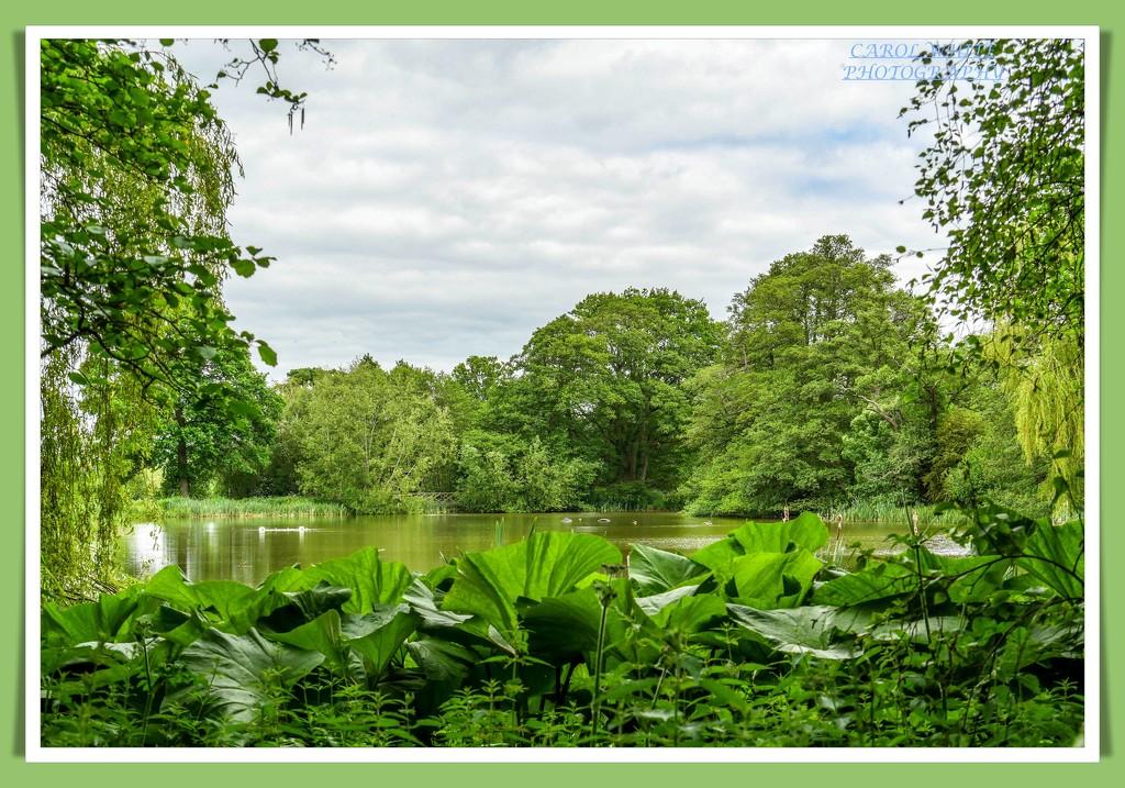 The Lake,Kelmarsh Hall And Gardens by carolmw