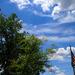 """""""Beautiful Day in the Neighborhood"""""""