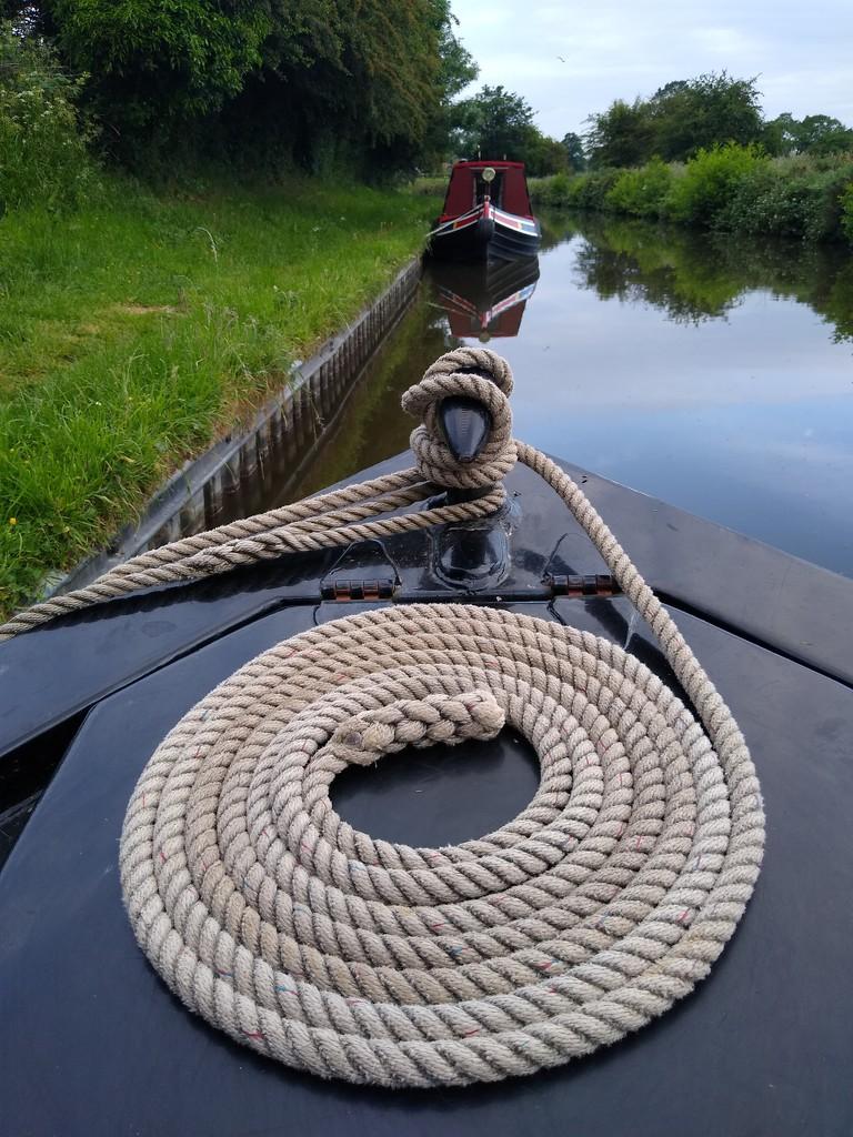 Classic Coiled Rope by 30pics4jackiesdiamond