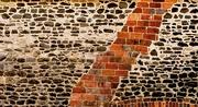 18th Jun 2021 - Garden wall 1