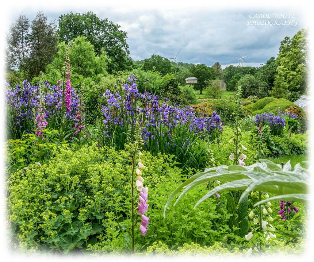 Another View,The Walled Garden,Kelmarsh Hall by carolmw
