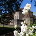 Aylesford Priory 5