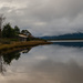 Bank of the Huon River