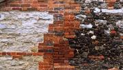 19th Jun 2021 - Garden wall 2