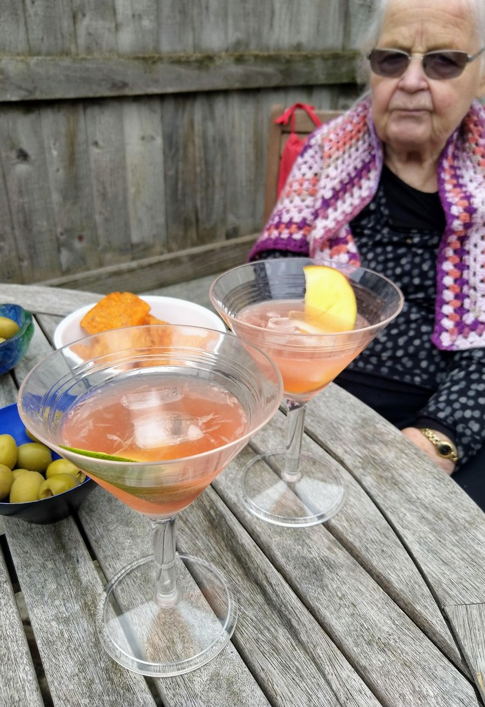 Watermelon and Chambord cocktail by boxplayer