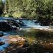 Ocqueoc Falls 2021