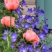 Peach and blue by craftymeg
