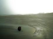 21st Jun 2021 - When the sun breaks through the mist (1)