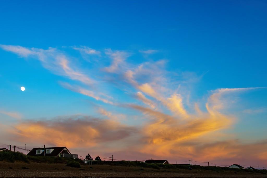 Phoenix arising. by padlock