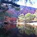 Day 7:  Ormiston Gorge