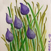 Chives Watercolor