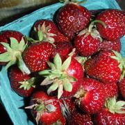 25th Jun 2021 - Strawberry Parfait Day