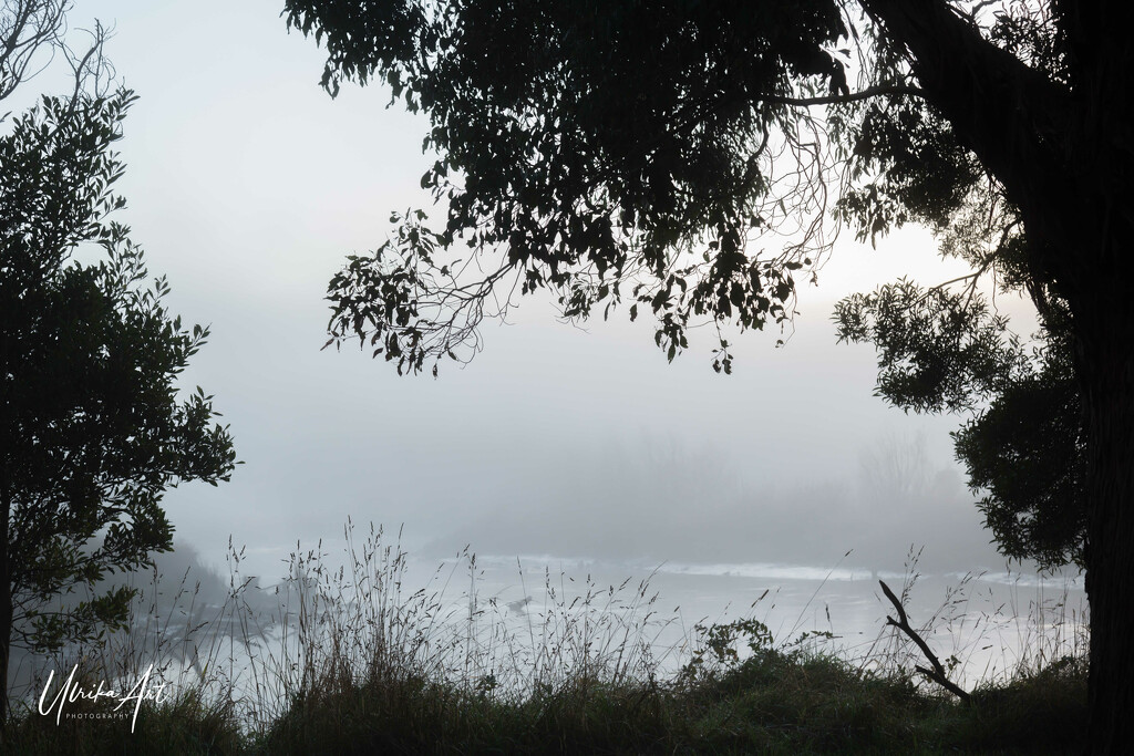 misty morning by ulla