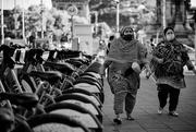 27th Jun 2021 - Afternoon walk