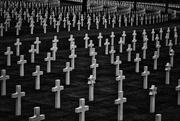 27th Jun 2021 - 0627 - American War Cemetery, Cambridge