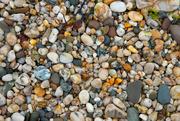 29th Jun 2021 - Stoney Beach