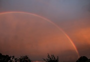 29th Jun 2021 - Evening Rainbow