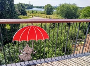 23rd Jun 2021 - Little My at the Walthamstow Wetlands