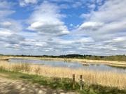 15th Apr 2021 - Middleton Lakes RSPB Reserve