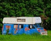 28th Jun 2021 - Camping Anyone?