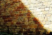 6th Jul 2021 - Golden Wall